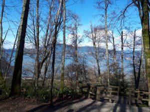Pacific Spirit Park off-leash dog park beautiful view of pacific ocean