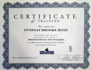 Professional Dog Walker Certificate through The International Academy of Canine Trainers