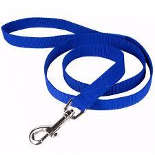 Nylon 6 foot blue dog leash