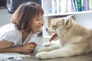 Owner and husky dog laying on floor smiling at each other